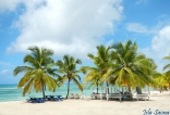Playa Isla Saona.