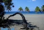 Playa Salinas, en Bani.