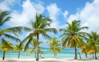 Isla Saona un destino que alberga una naturaleza sin igual, donde lo natural te hace sentir especial.